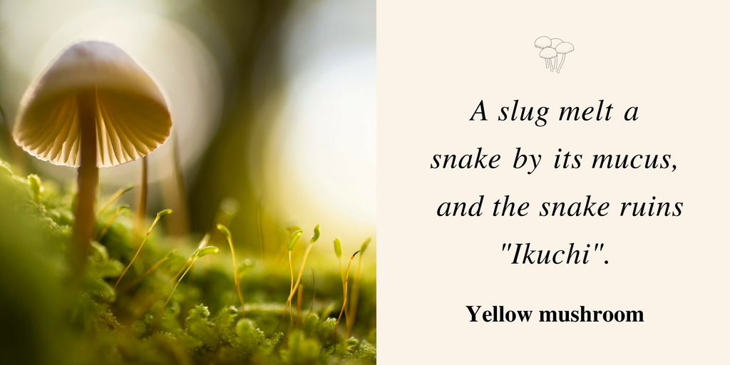 イクチと蛞蝓と蛇