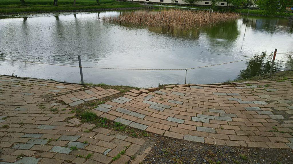 高椅神社の千年の池