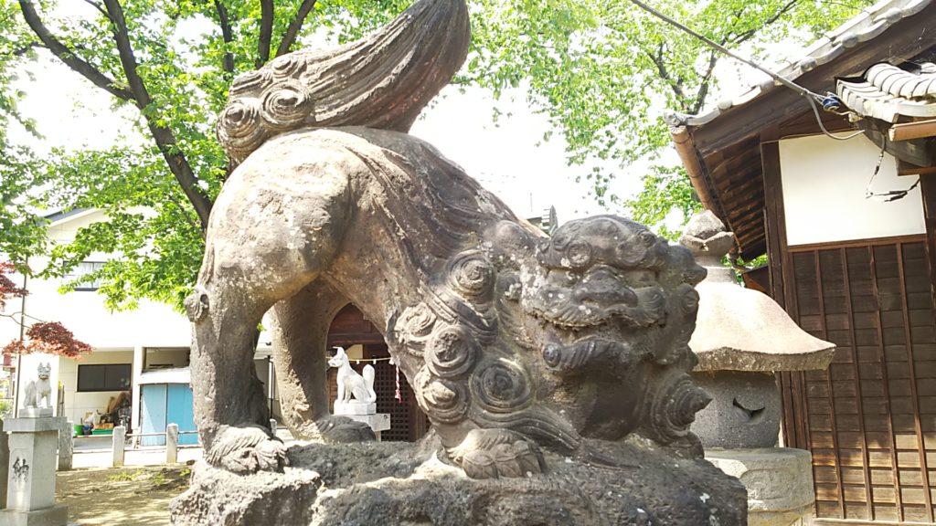 赤烏神社 狛犬 吽形