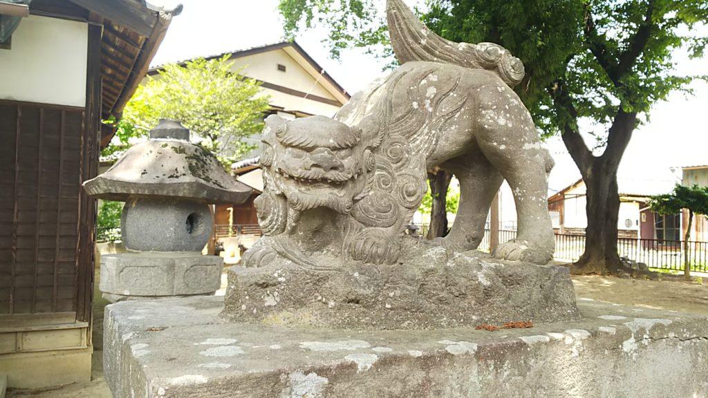 赤烏神社 狛犬 阿形