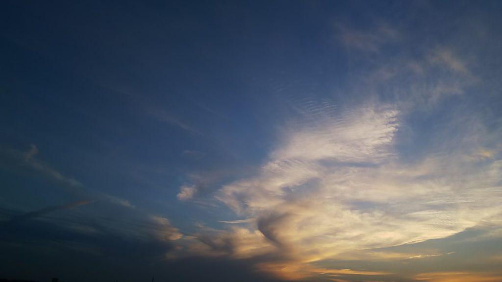 夕暮れに見た雲。濃いグラデーションの中に翼を広げているようでした。