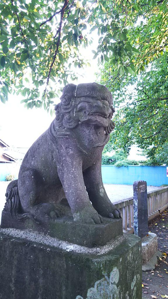 前玉神社狛犬