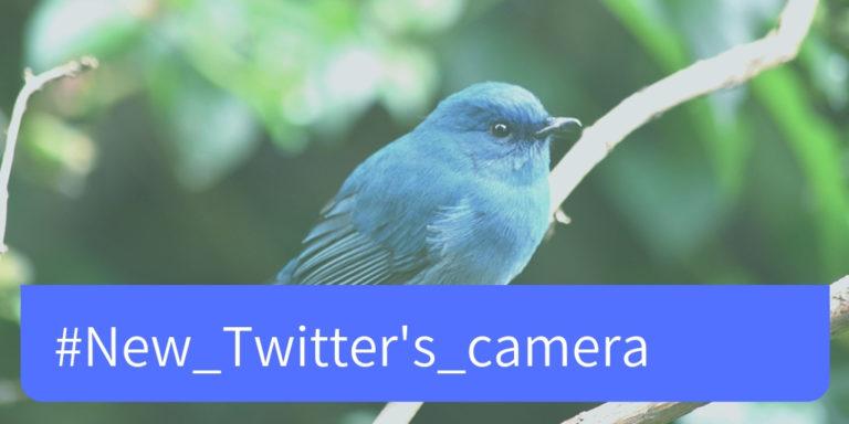 Twitter Draupnir