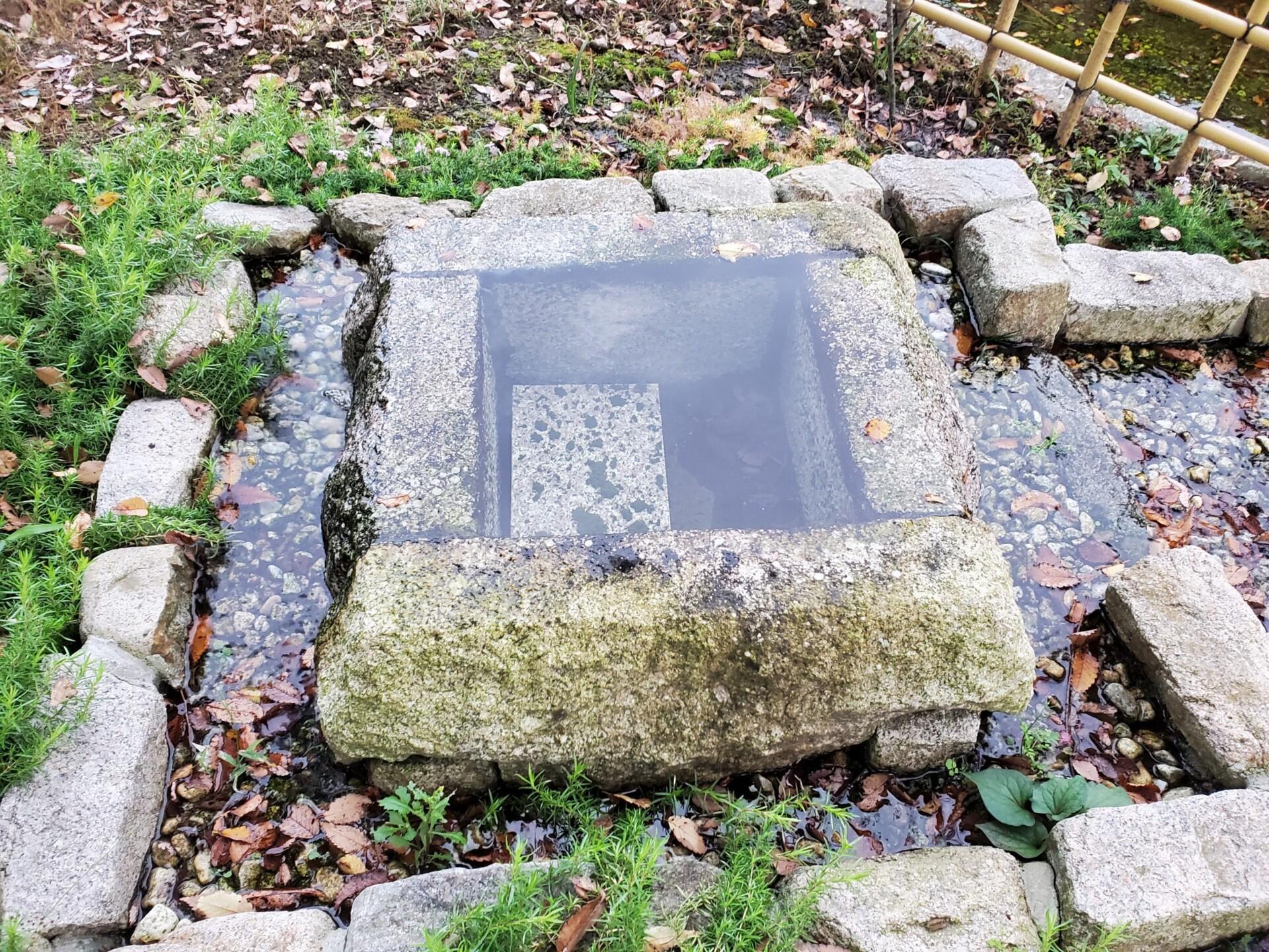 鷲宮神社 湧き水