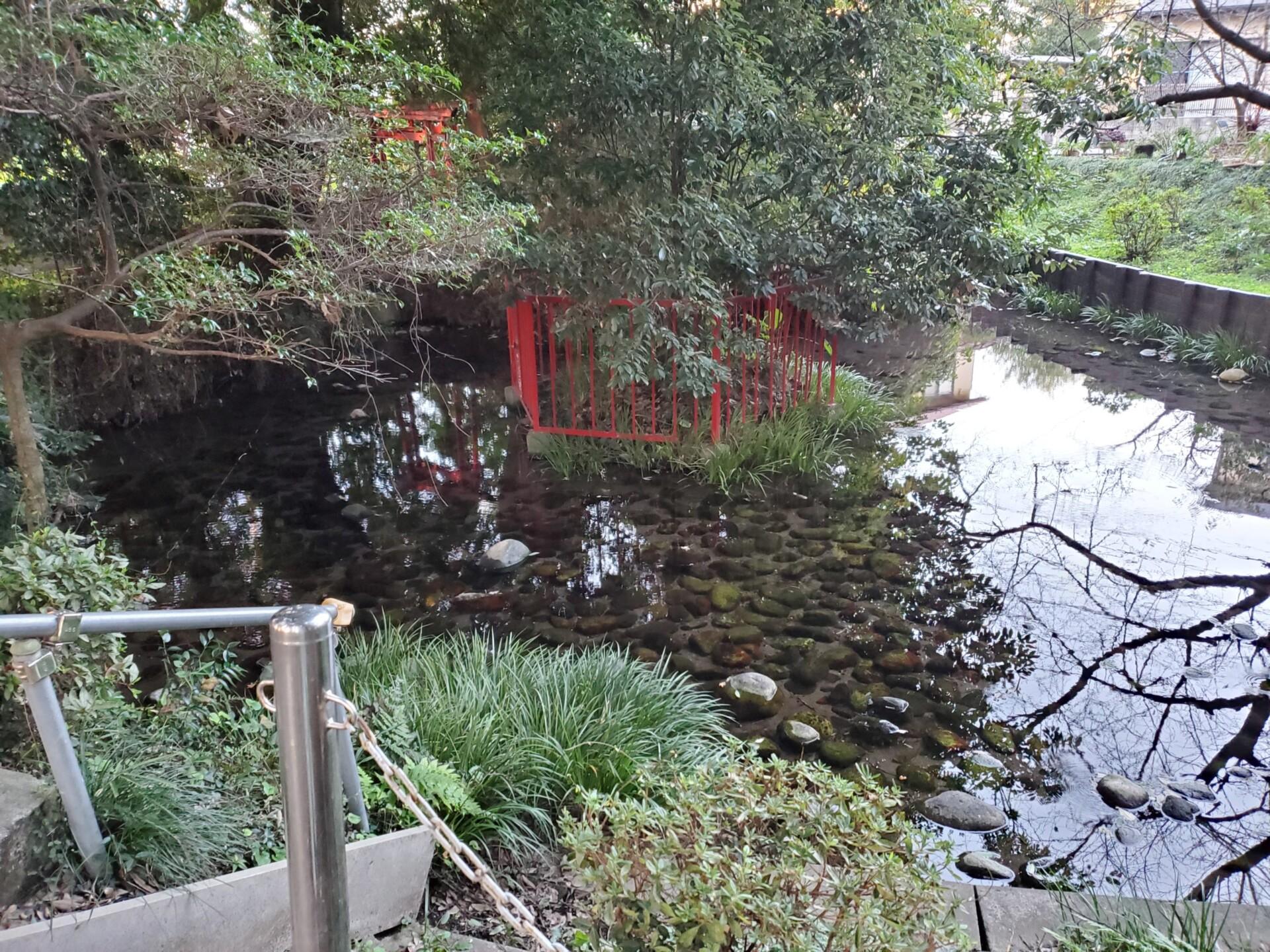 神明宮の湧き水