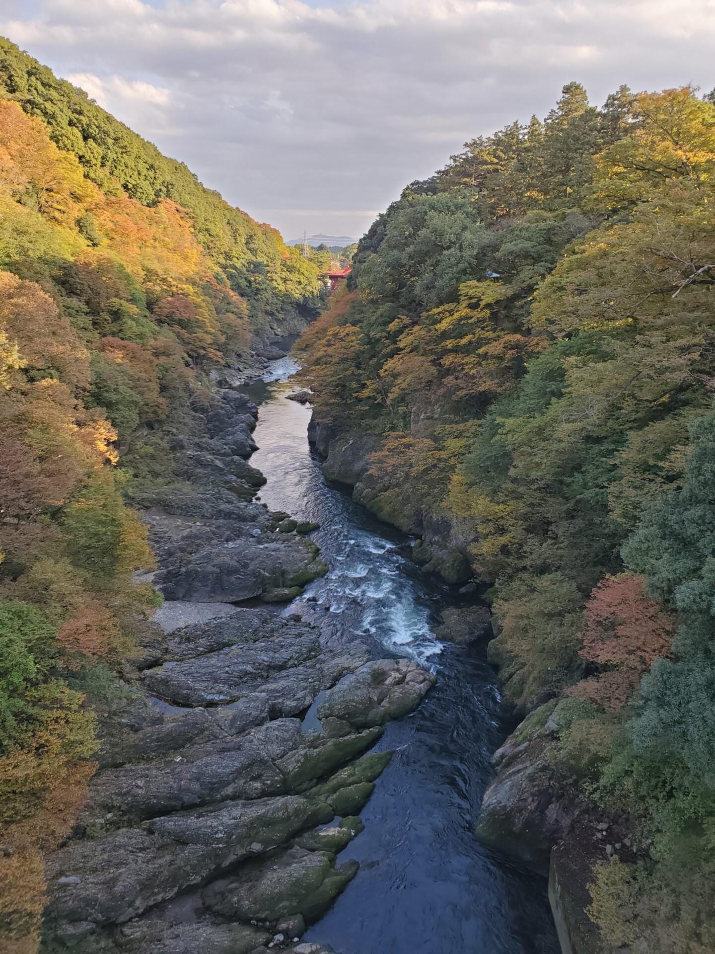 高津戸峡の渓流