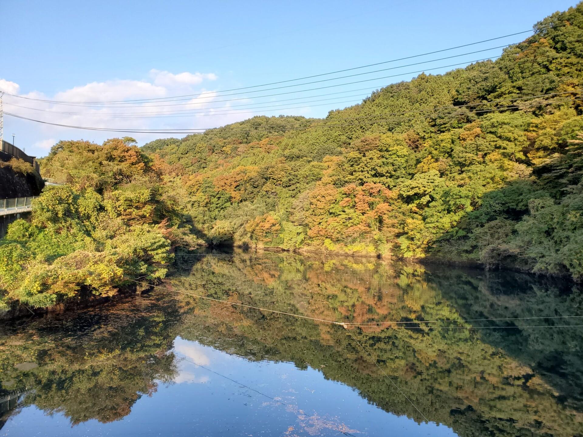 高津戸ダム湖